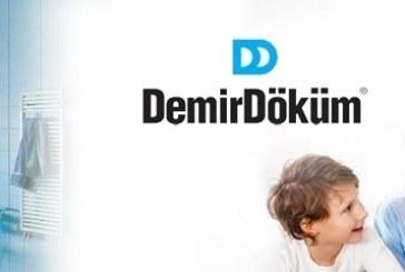 DemirDöküm ile 200 web sayfası yenilendi